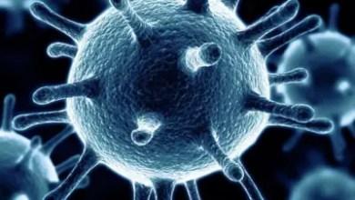 Photo de Coronavirus : 105 cas en 24 heures, plus de 1.000 au total, le plus lourd bilan d'Haïti