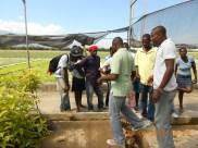 flower nursery - double harvest farms
