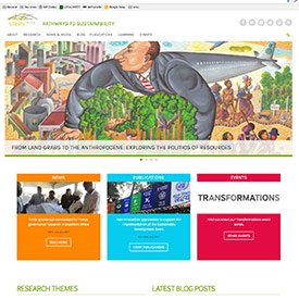 STEPS Centre Website