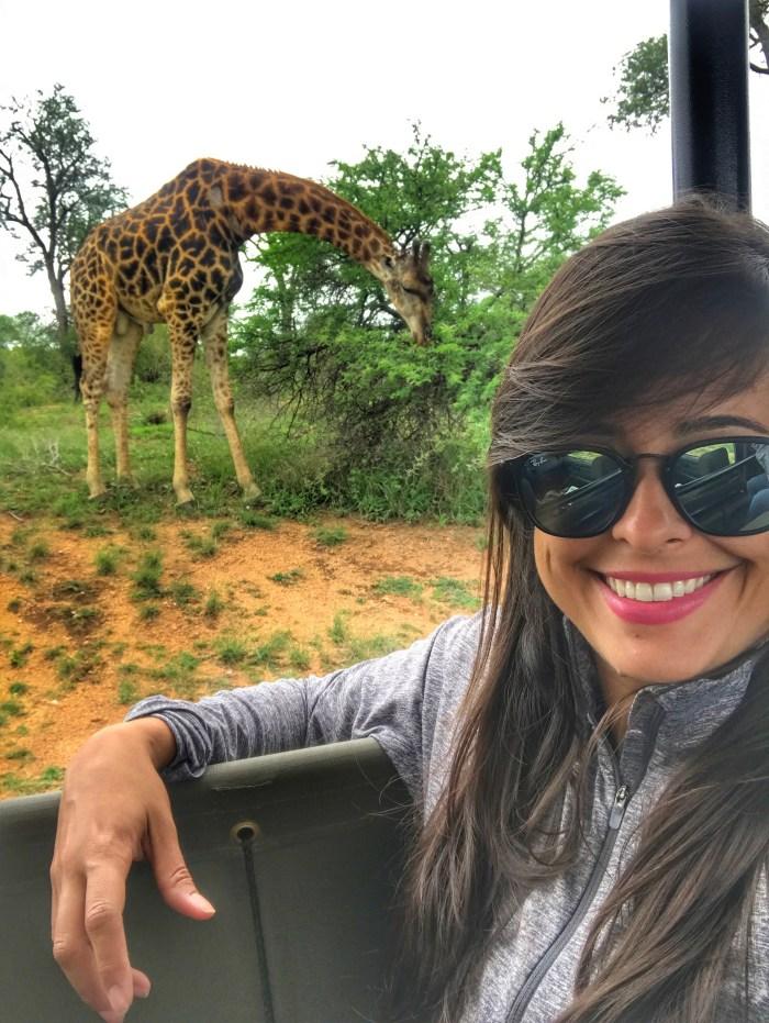 como fazer um safari na Africa do Sul