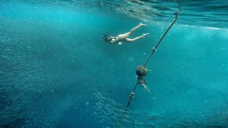 o que fazer em Cebu