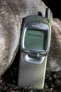 Das über 10 Jahre alte Nokia 7110 ist das Gegenteil eines Smartphones