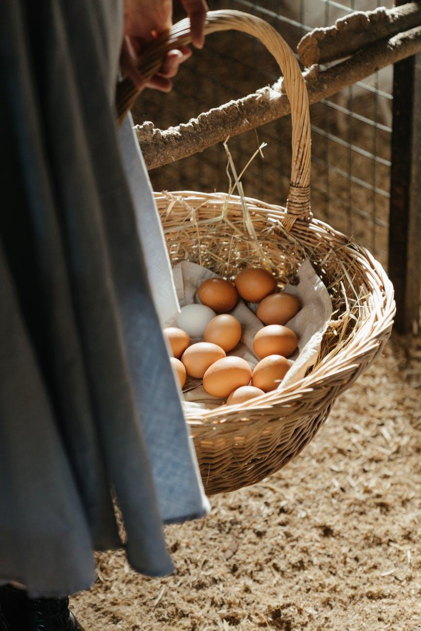 brown wicker basket with orange fruits