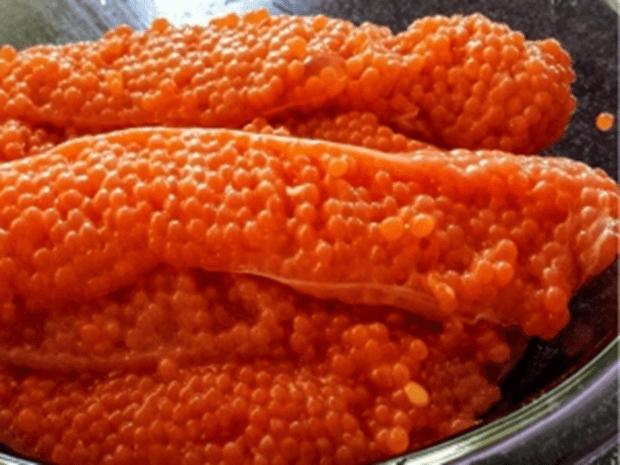 Telur ikan