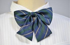 ribbon_school06