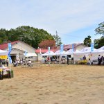 第3回大沼高原フェスティバル2014 レビュー