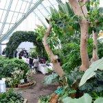 函館市熱帯植物園第11回収穫祭