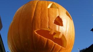 函館朝市ひろばハロウィン祭 秋の大かぼちゃ祭り