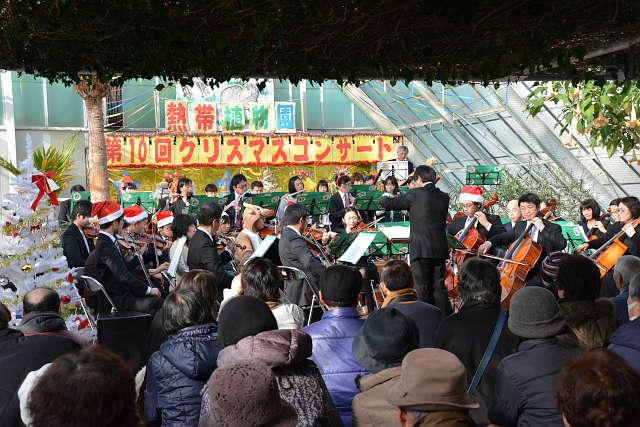 函館市熱帯植物園 第10回クリスマスコンサート