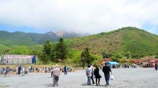 【2016/5/29】第48回恵山つつじまつりイベント開催日