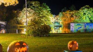 【2019/10/18~20】第8回大沼ハロウィンナイト&紅葉ライトアップクルーズ (七飯町)