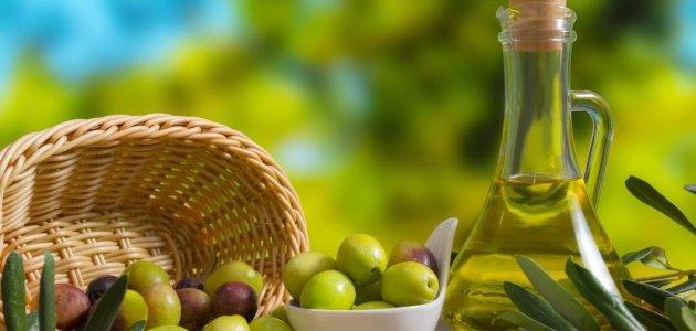 استخدامات زيت الزيتون .. تعرف معنا على فوائد زيت الزيتون واستخداماته المتعددة