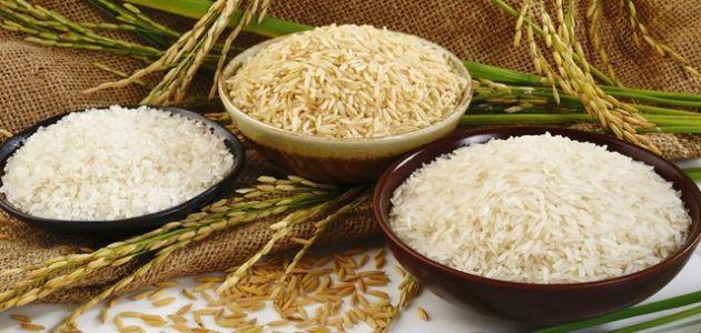 تحضير الأرز بطريقة إحترافية بأنواعه المتعددة وماهي ميزات كل نوع من الأرز