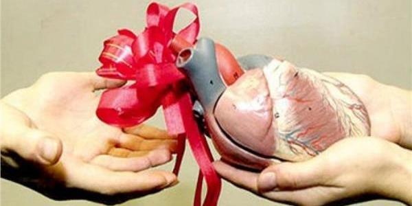 التبرع بالأعضاء وفئات الدم النادره..معلومات وحقائق هامة