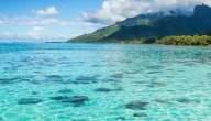 سبب ملوحة البحر..ماذا يقف وراء هذه الملوحة وما فوائده