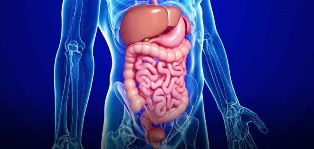 متلازمة القولون العصبي IBS عسر الهضم الوظيفي FD