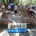 千葉市動物公園のゴールデンウィーク混雑具合レポ!
