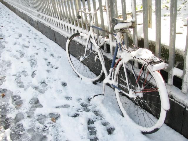 自転車 指先 防寒