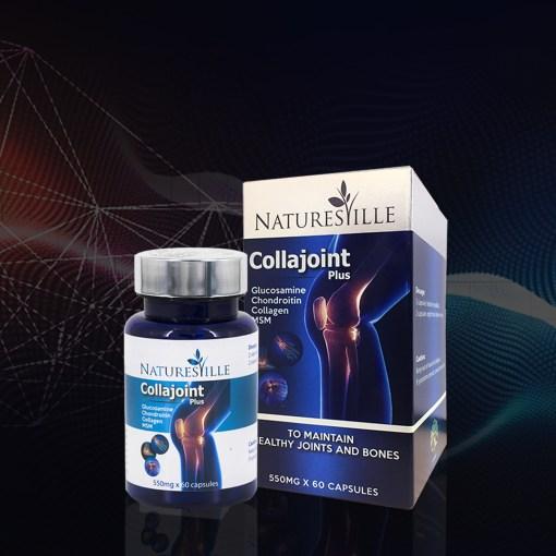 Collajoint Plus
