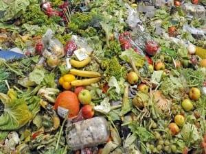 foodwaste-blog-300x225