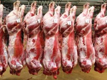 How To Keep An Eye On Fraudulent Halal Food/Meat Suppliers In Japan
