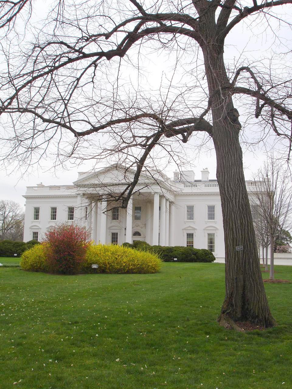 White House Lawn in Winter