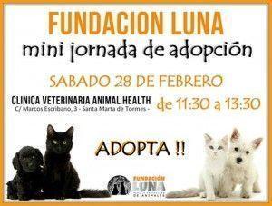 Minijornada de adopción el 28 de febrero