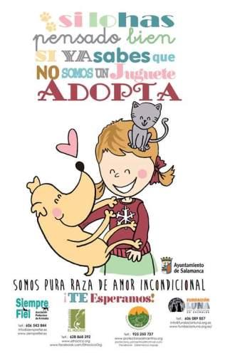 Campaña Adopción en Navidad del Ayuntamiento de Salamanca