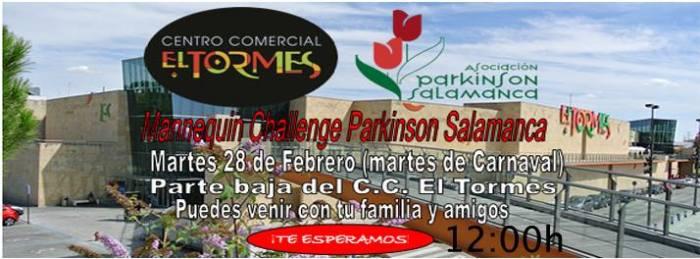 Manequin Challenge a favor del Parkinson en El Tormes