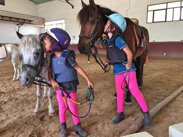 Amor por los caballos en el Centro Ecuestre