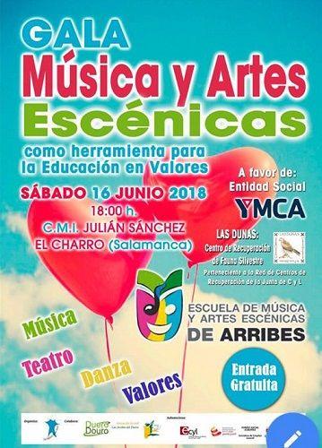 Gala de Música y Artes Escénicas