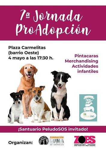 Jornada de pro adopción de animales en el barrio del Oeste
