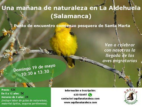 Una mañana de naturaleza en La Aldehuela con Aquila