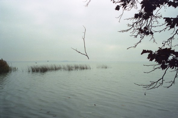 2003-11-09-202-6306