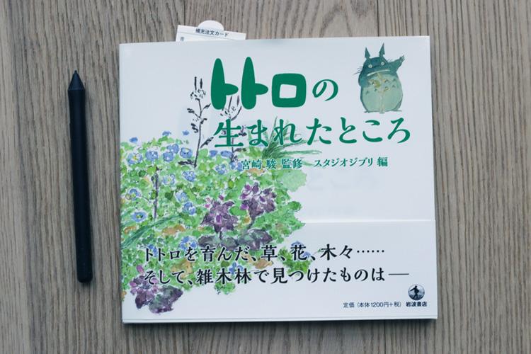 The Birthplace Of Totoro - Miyazaki Akemi Art Book Review