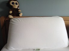 This is what the king-size pillow looks like in it's case.