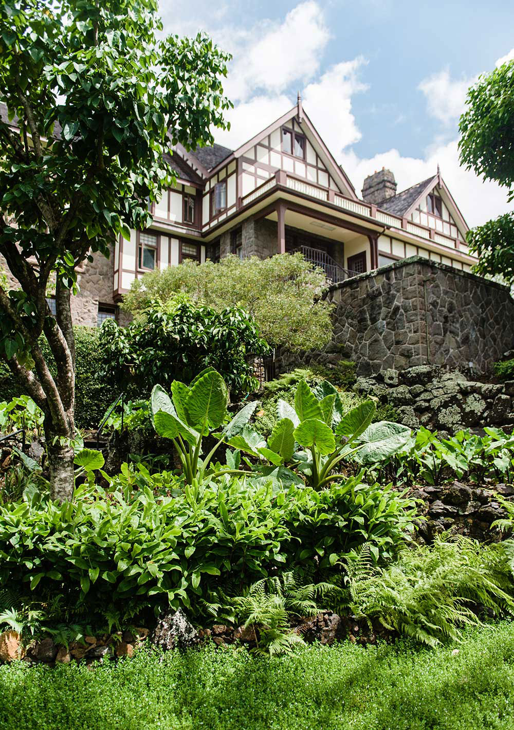 View of Manoa Heritage Center with stone wall and green plants