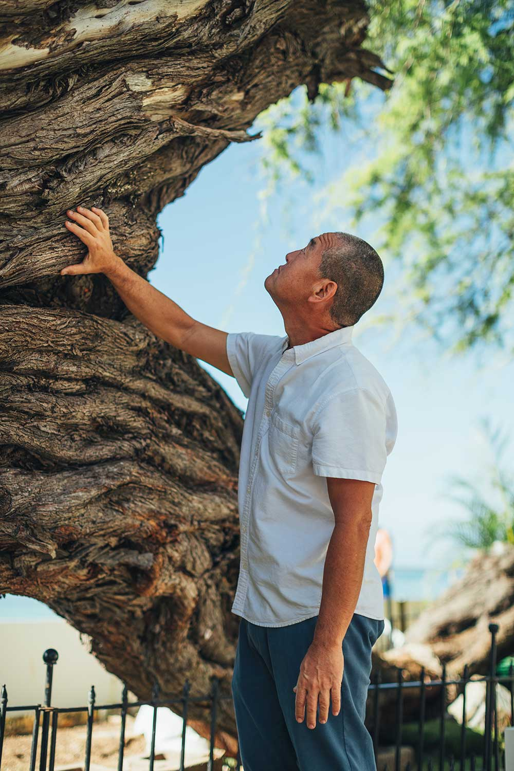 John Koga in front of a kiawe tree.