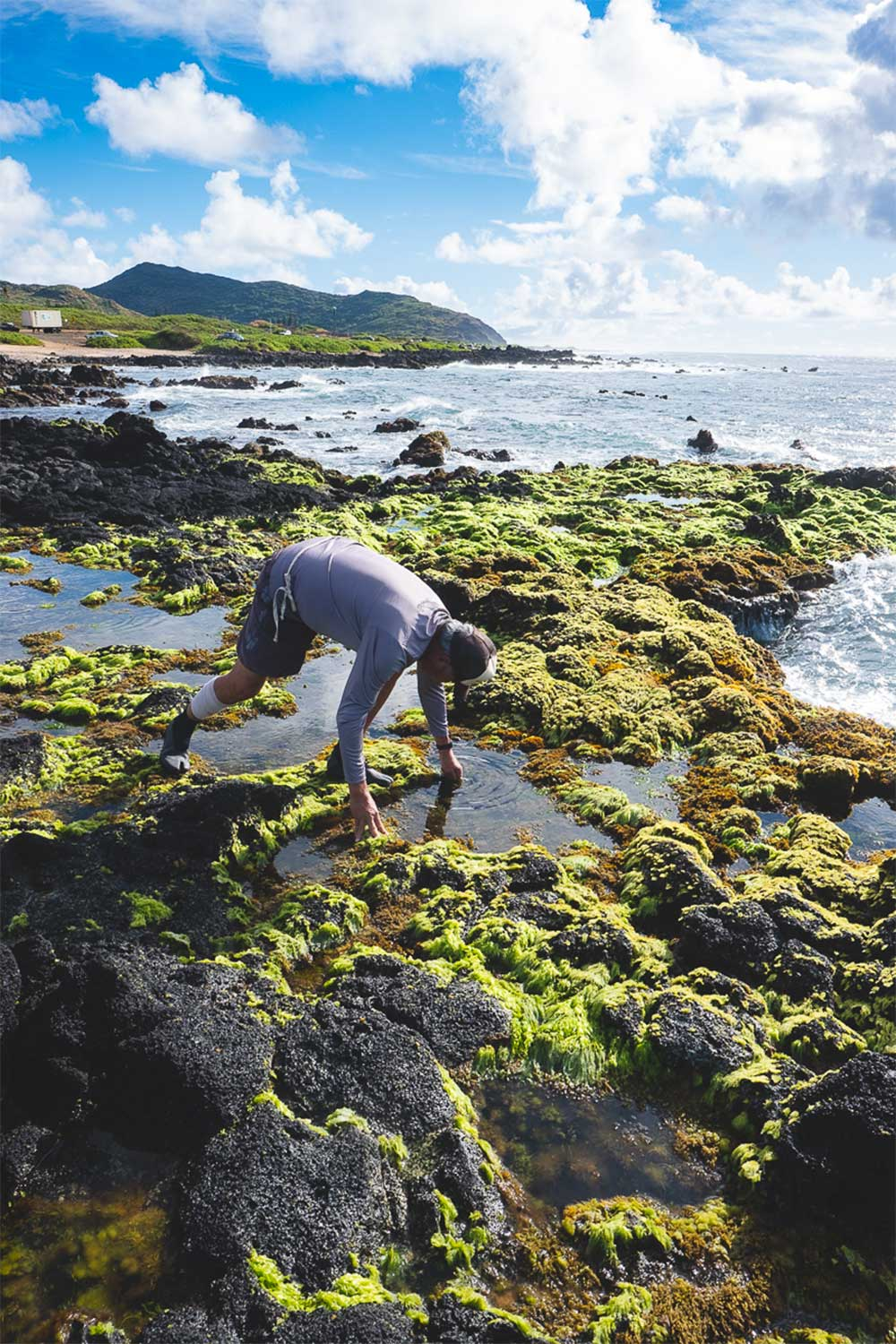 Man standing on a sea moss covered point near the ocean bending over to touch the water