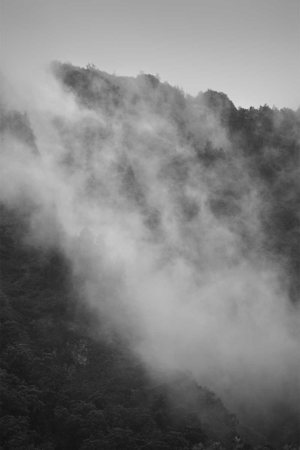 Black and white image of the Koolau mountain range covered in mist