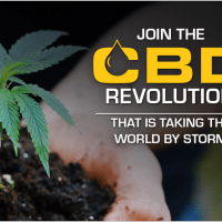 Sell CBD On Line