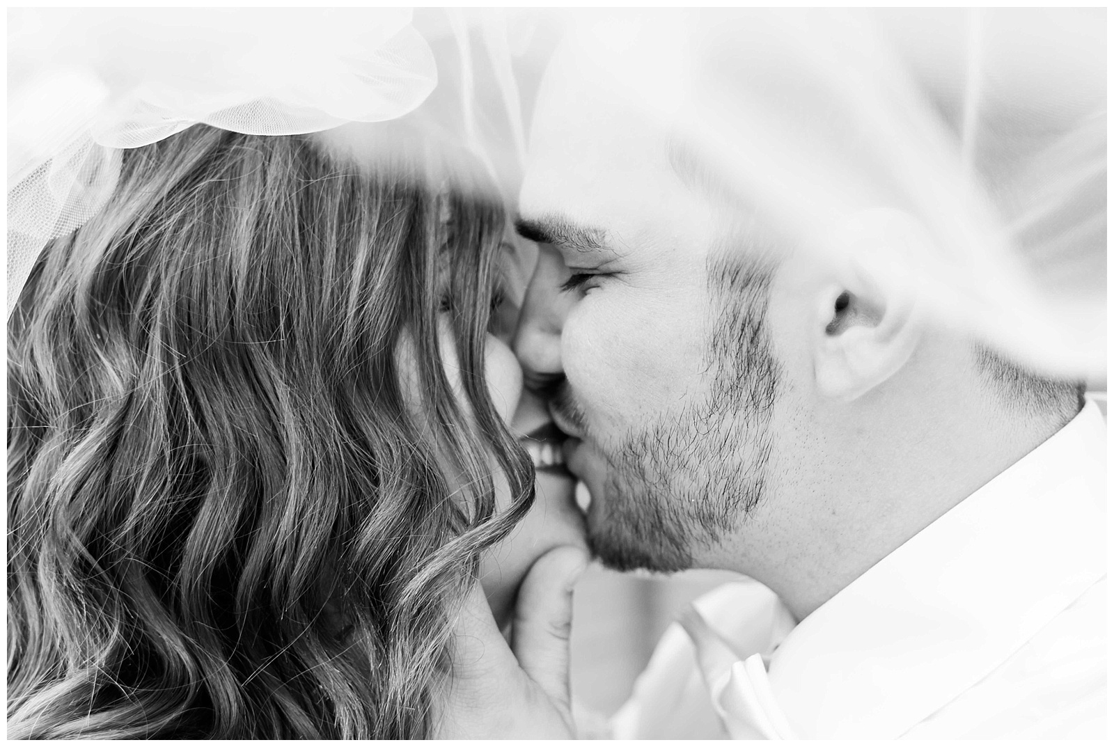 St. Louis Engagement & Wedding Photographer