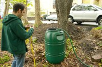 Neighbor, Colin, hitches the rain barrel to a nearby tree