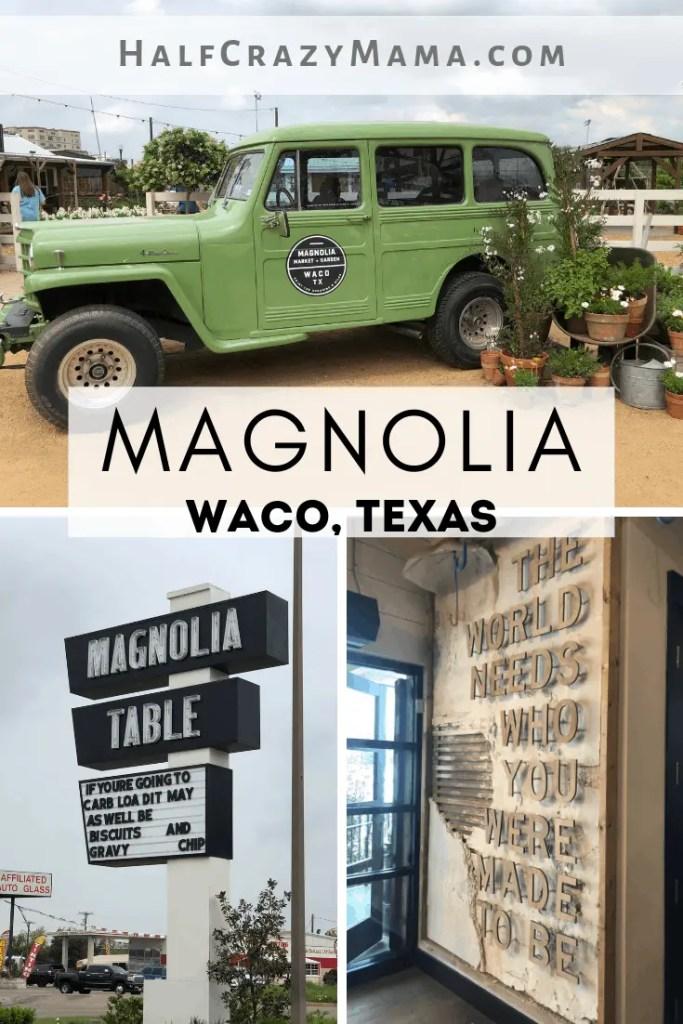 Magnolia in Waco