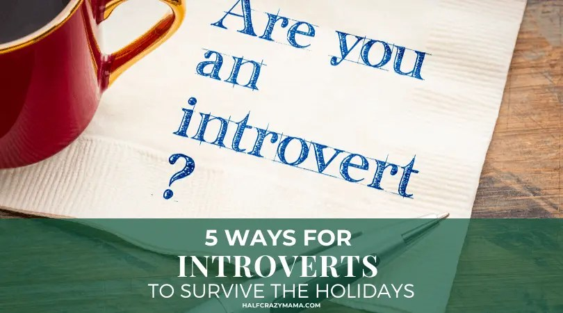 introvert at the holidays