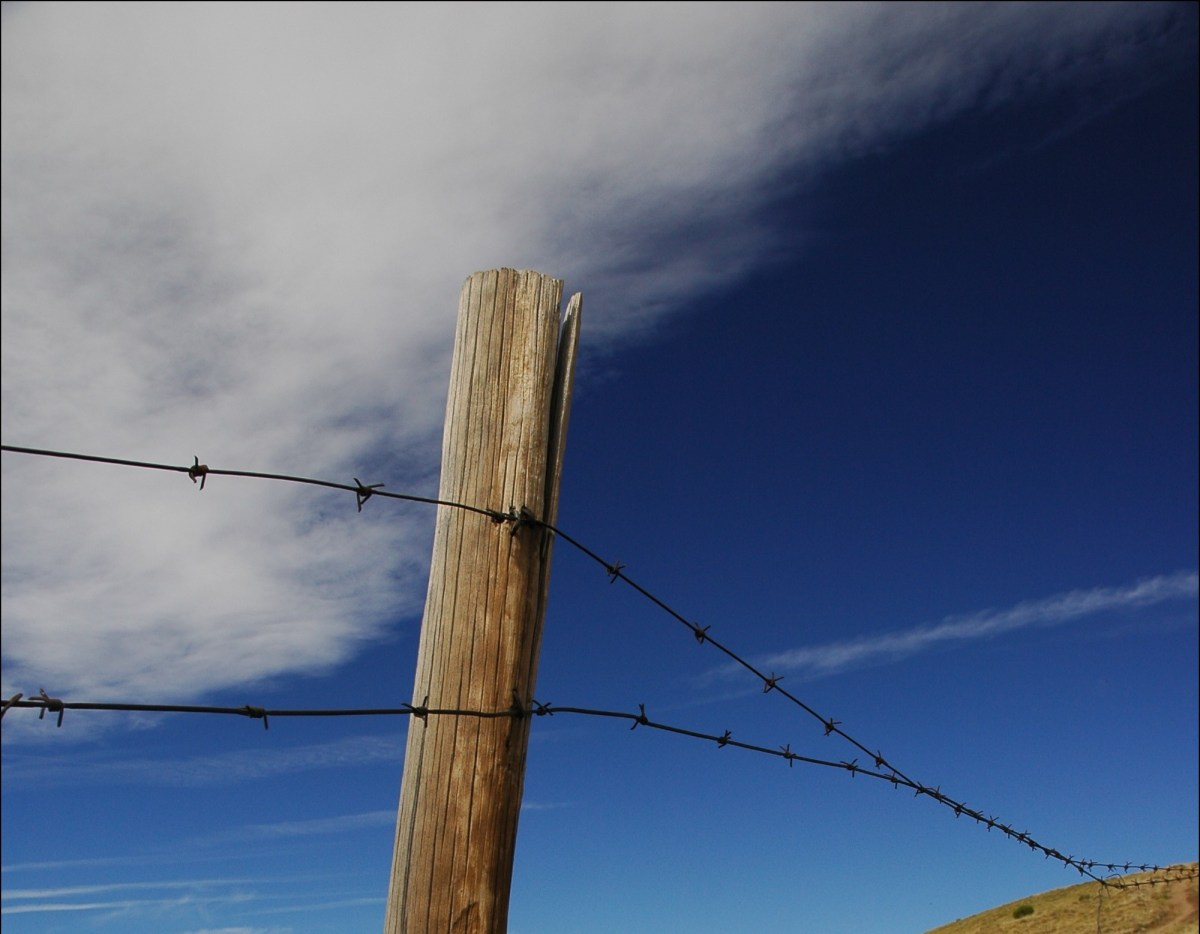 Clouds and Fences