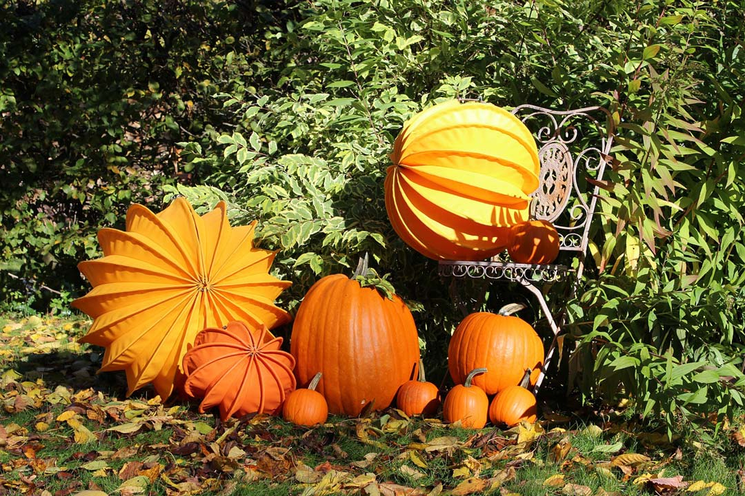 pumpkins and lampions