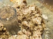 Minced shallot and mushrooms.