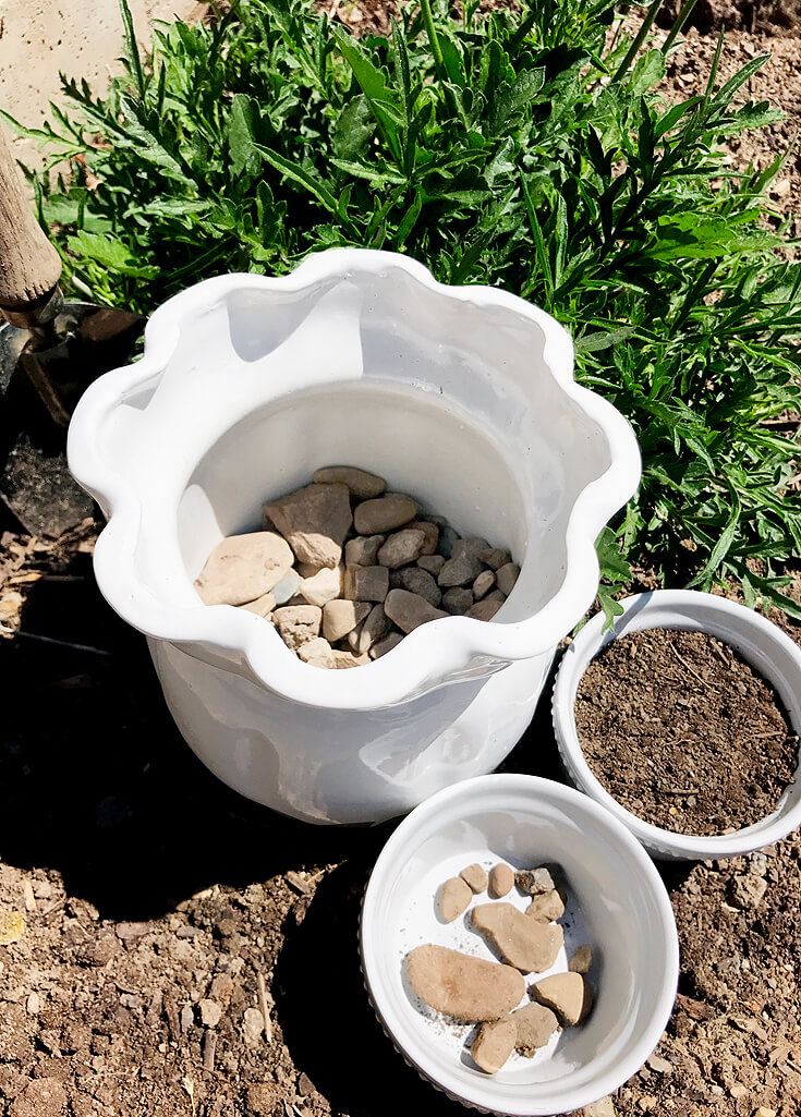 How to Grow Wheatgrass with easy printable instructions | Halfpint Design - Wheatgrass berries: Day 4 planting pots with no holes I add a layer of pea gravel I collected from my garden to help with drainage