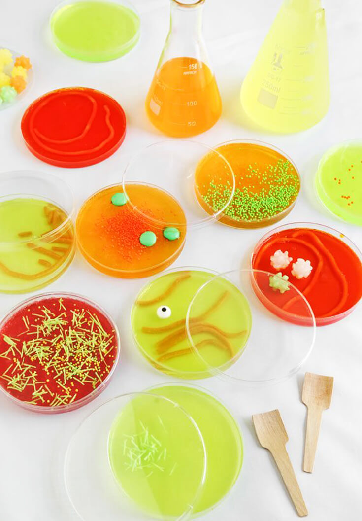 """Have them all talking about your science party. Eat Jello """"bacteria"""" from a petri dish. Mad Science Party Ideas   HalfpintPartyDesign - Science Party, Science Food, STEM party, Mad Science"""